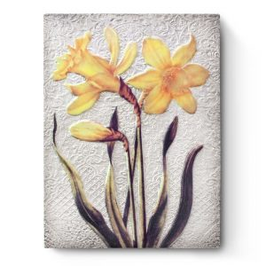 t510-daffodils-front