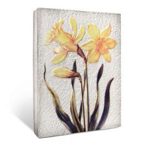 t510-daffodils-3d